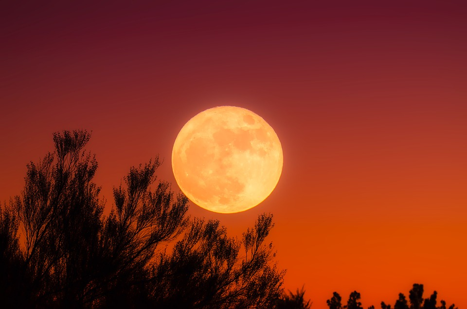 Harvest moon lights up night sky